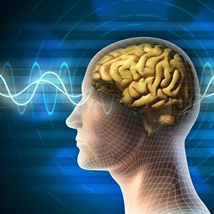 Does Brain Training Work?