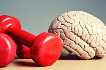 Brain Training & Fitness